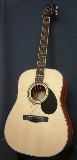 Greg Bennett Dreadnought